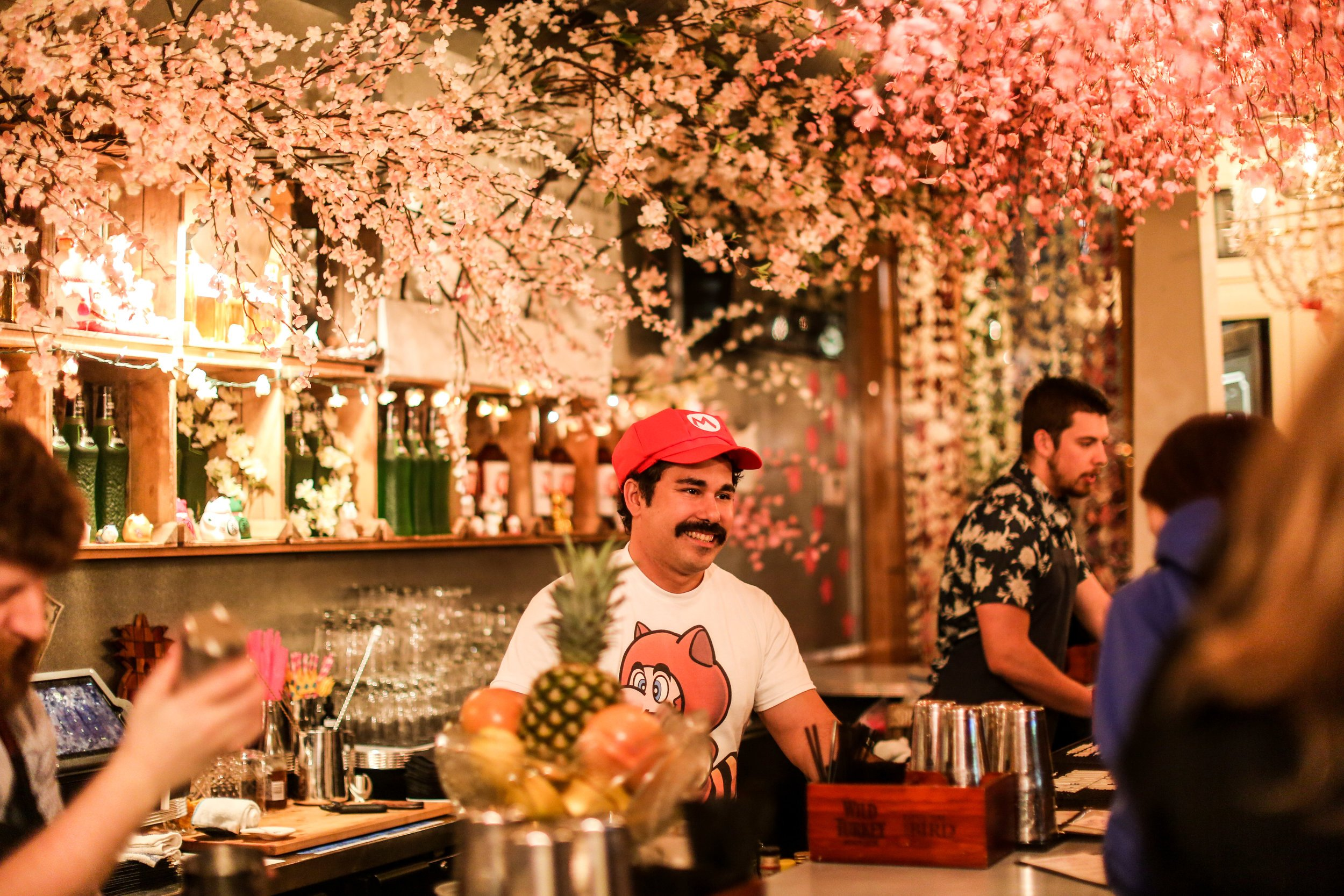 cherry blossom pub consept