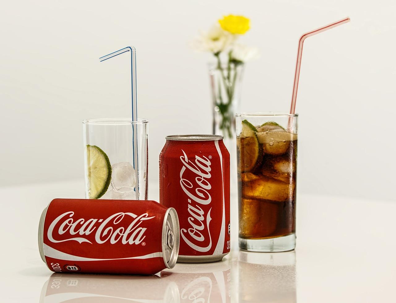 coca colanın standar kutu kolaları