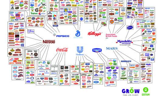 on büyük marka grafiği