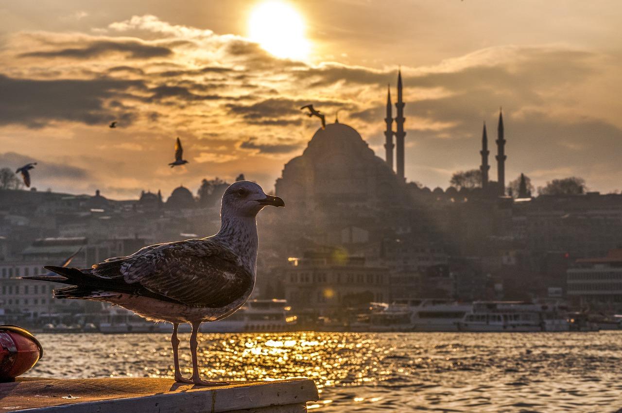 istanbul nexflix