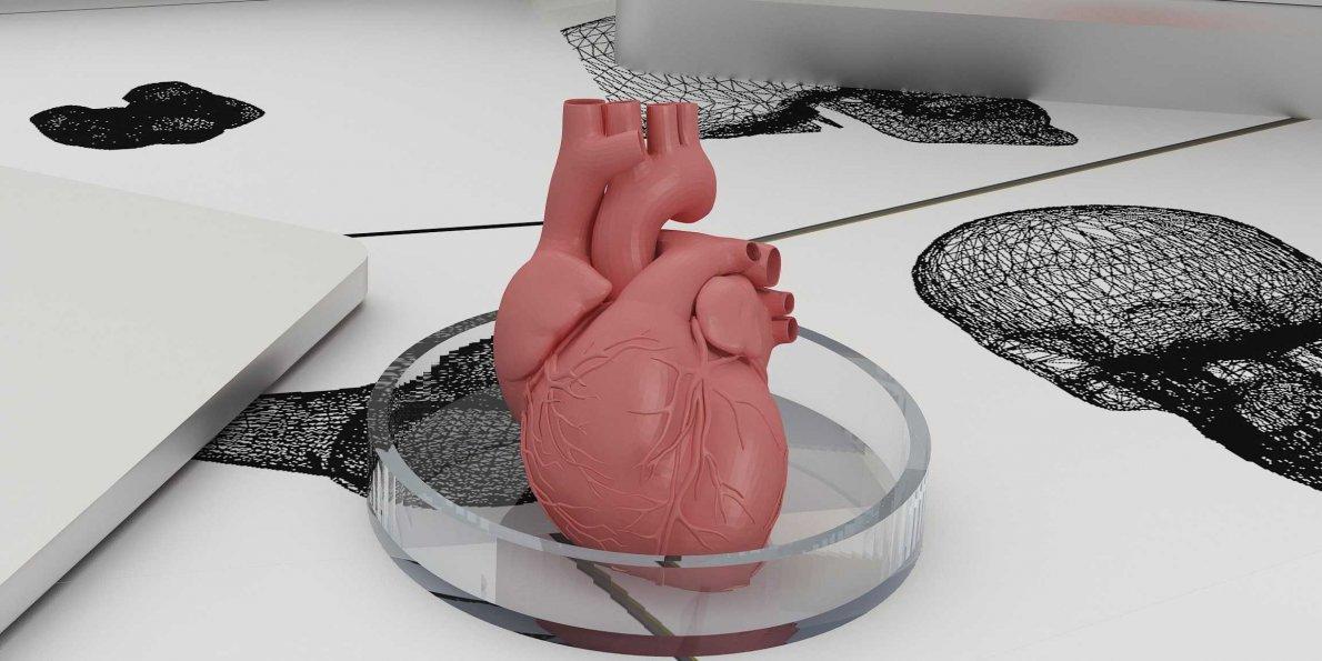 Genetik mühendisleri 3D organ geliştiriyorlar