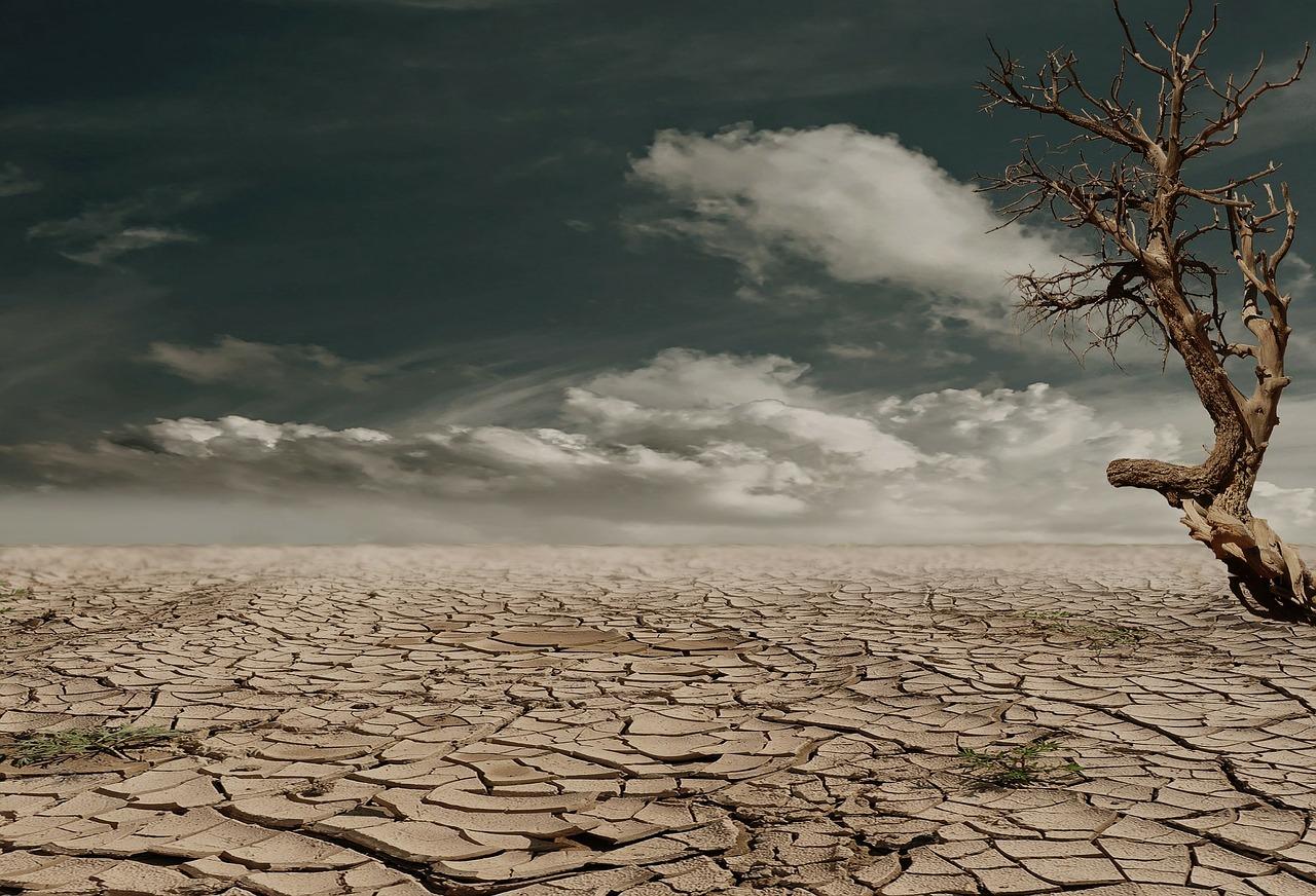 kuraklık ve etkileri