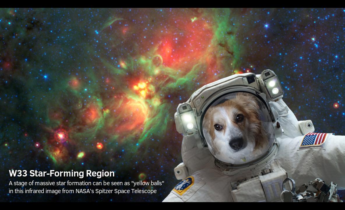 NASA selfie uygulaması