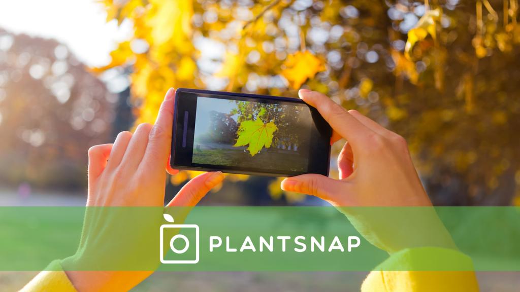 PlantSnap Plant Identification ios indir