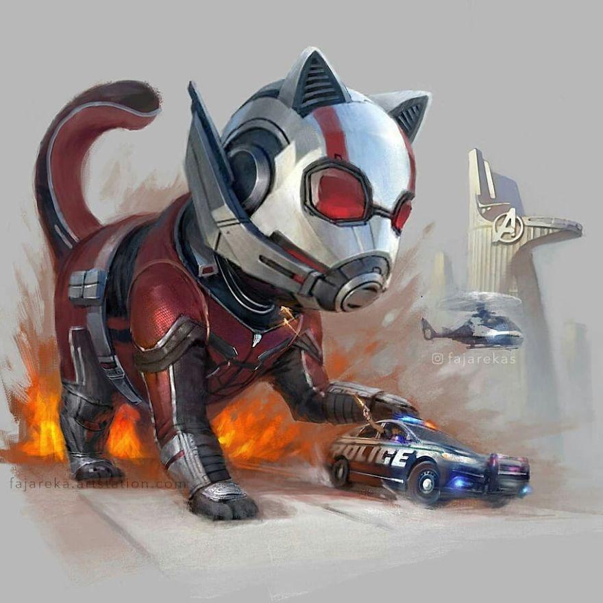 ant cat