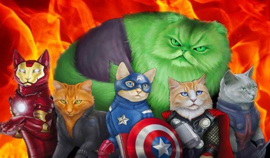 süper kahraman kediler