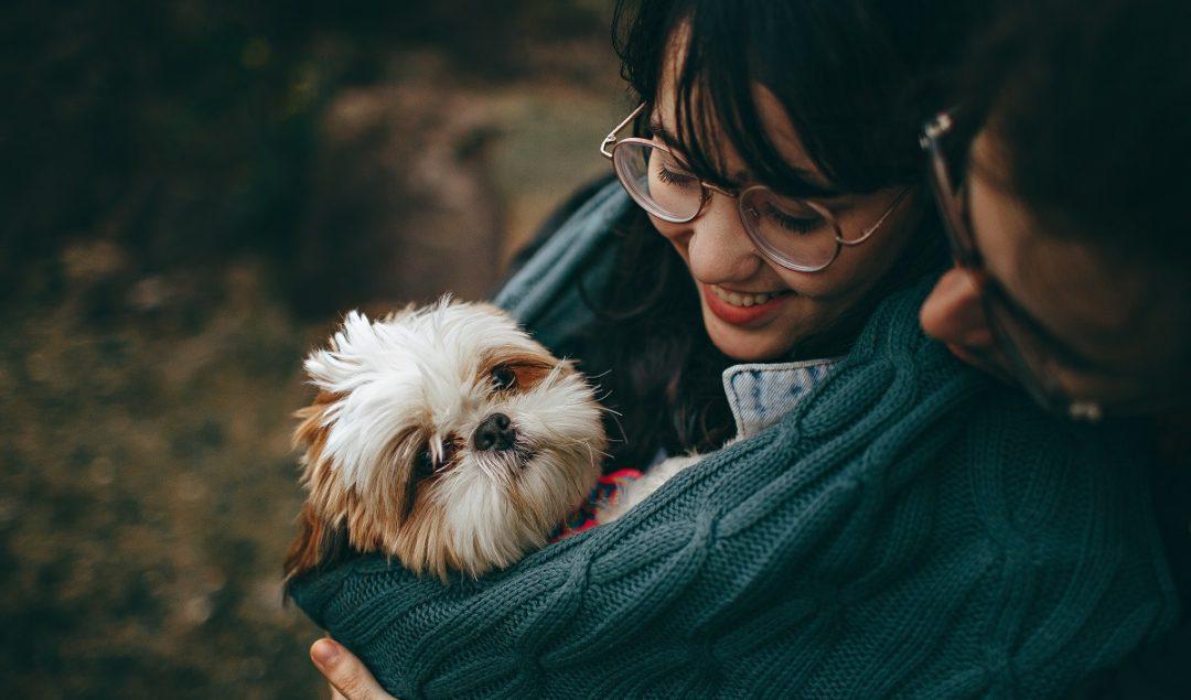 hayvanların-psikolojimize-faydalari