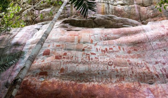 Kolombiya Amazon'unda On binlerce Petroglif