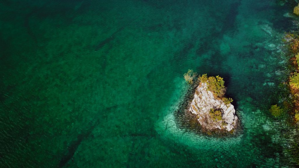 iklim-krizi-ile-mucadele-deniz-ormanlarinin-korunmasi