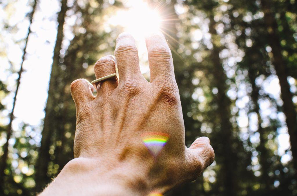 spirituel-hayvan-nedir-sizinki-hangisi